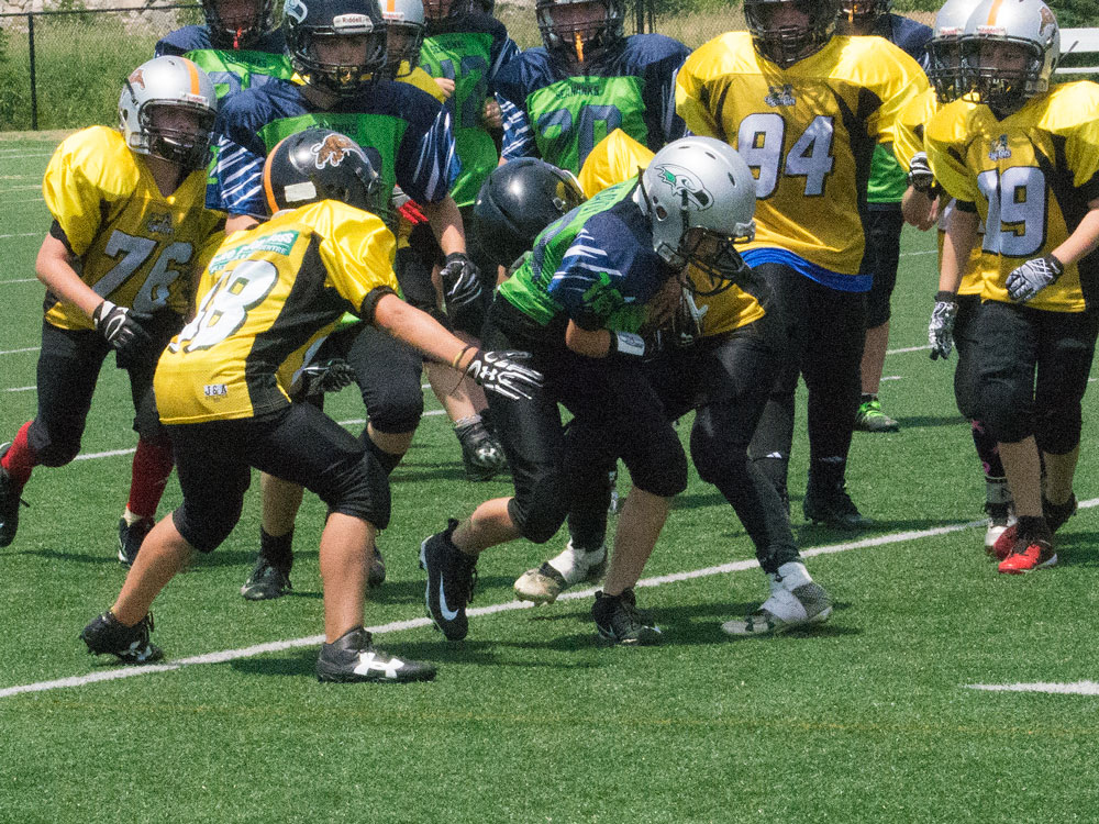 PeeWee Seahawks vs Tiger Cats