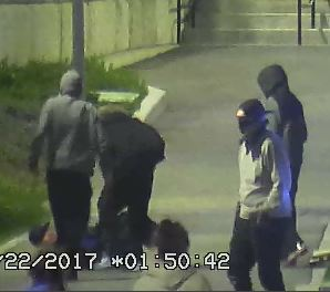 vicious attack in st catharines